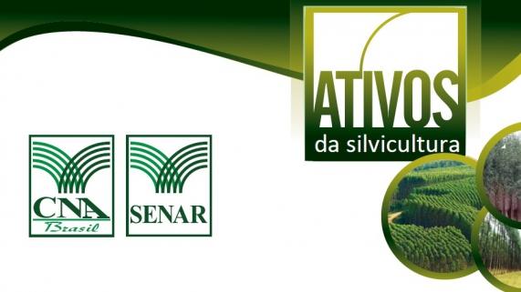 ativos-silvicultura